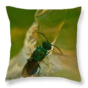 Halicid Bee 12 Throw Pillow