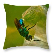 Halicid Bee 20 Throw Pillow