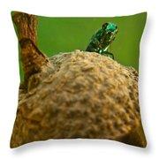 Halicid Bee 21 Throw Pillow