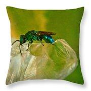 Halicid Bee 22 Throw Pillow
