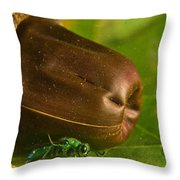 Halicid Bee 5 Throw Pillow