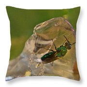 Halicid Bee 8 Throw Pillow