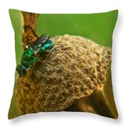 Halicid Wasp 4 Throw Pillow