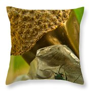Halicid Wasp 5 Throw Pillow