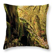 Hall Of Mosses Throw Pillow