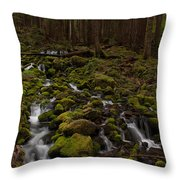 Hall Of The Mosses Throw Pillow