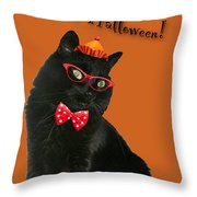 Halloween Card - Black Cat Ready To Party Throw Pillow