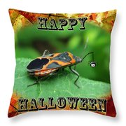 Halloween Greeting Card - Box Elder Bug Throw Pillow