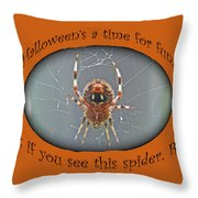 Halloween Greeting Card - Marbled Orb Weaver Spider Throw Pillow
