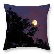 Halloween Moon 2009 Throw Pillow