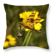 Halloween Pennant Throw Pillow