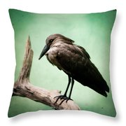 Hamerkop Throw Pillow
