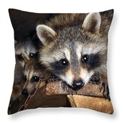 Hamming It Up Throw Pillow