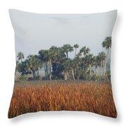 Hammock, Everglades National Park Throw Pillow