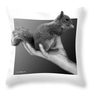 Hand Full Of Squirrel Throw Pillow