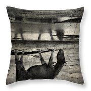 Hand That Feeds  Throw Pillow
