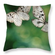 Handkerchief Butterfly Or Wood Nymph Throw Pillow
