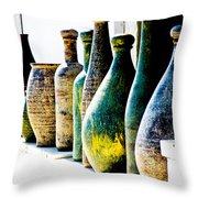Handmade Throw Pillow by Stacey Granger