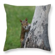 Hanging And Chilling Throw Pillow