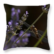 Hanging In The Lavender Throw Pillow