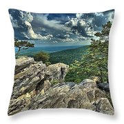 Hanging On To Life Throw Pillow