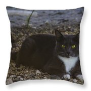 Hanging Out By The Creek Throw Pillow