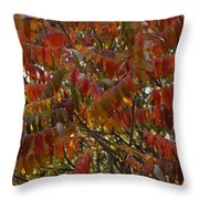 Hanging Out Clothes Throw Pillow