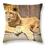 Hanging Out Throw Pillow