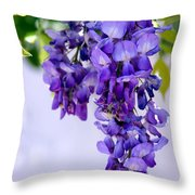 Hanging Purple Passion Throw Pillow