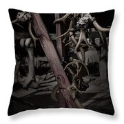 Hanging Rack Throw Pillow by Kelly Rader