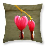 Hanging Together Throw Pillow