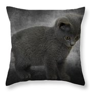 Hannah's Kitten Throw Pillow