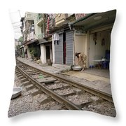 Hanoi Daily Life Throw Pillow