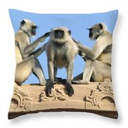 Hanuman Langurs Grooming Throw Pillow