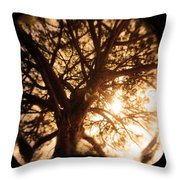 Happiness Lives Throw Pillow