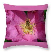 Happy As Can Bee Throw Pillow