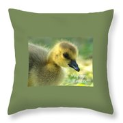 Happy Easter Gosling Throw Pillow