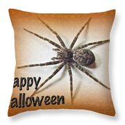 Happy Halloween Spider Greeting Card - Dolomedes Tenebrosus Throw Pillow