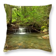 Happy Trail Falls Throw Pillow