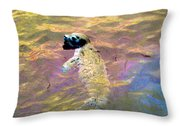 Harbor Seal Throw Pillow