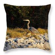 Hard Rock Heron Throw Pillow
