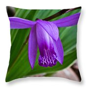 Hardy Orchid 1 Throw Pillow