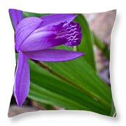 Hardy Orchid 3 Throw Pillow