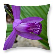 Hardy Orchid 5 Throw Pillow