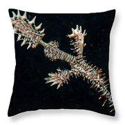 Harlequin Ghost Pipefish With Fins Throw Pillow