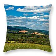 Harnessing The Wind Throw Pillow