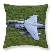 Harrier Low Level Throw Pillow