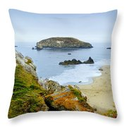Harris Beach Throw Pillow