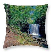 Harrison Wright Falls - Summertime Throw Pillow