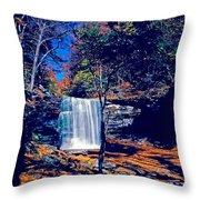 Harrison Wright Falls In Fall Throw Pillow